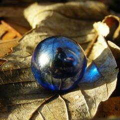 Blue marble | by pearceval