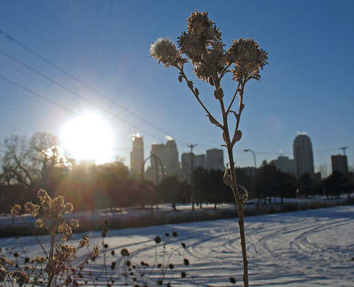 Minneapolis Skyline {Afternoon} | by my camera is a jar