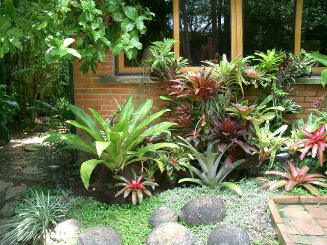 All Sizes Jardines Con Bromelias Y Orquideas 9 Flickr Photo Sharing