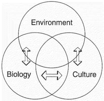 the biological and cultural forces that Sociocultural factors are the larger scale forces within cultures and societies that affect the thoughts, feelings and behaviors such factors include: attitudes.