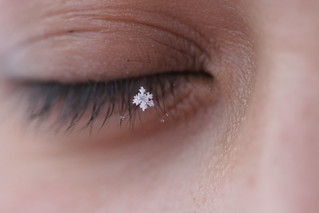 snowflake lashes. | by october13th
