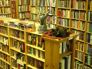 Bookstore cat at Ophelias Books | by brewbooks