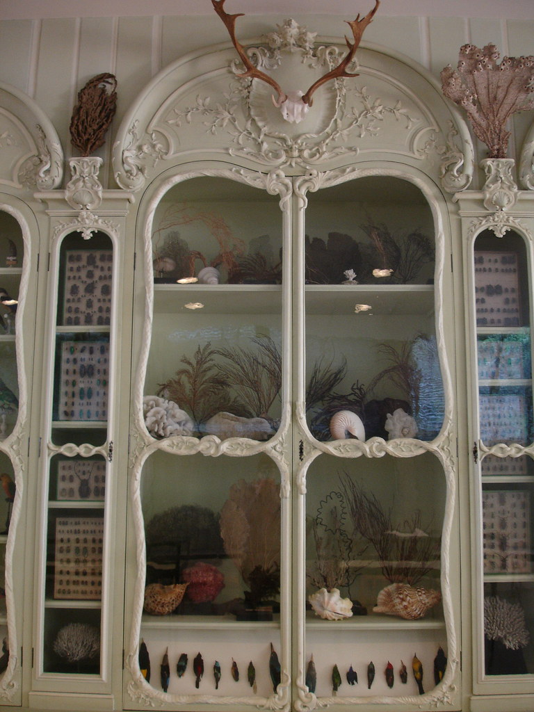 Le cabinet de curiosit de bonnier de la mosson in the med flickr - Cabinet de curiosite forum ...