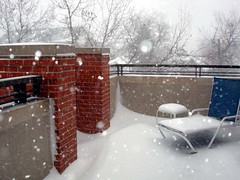 blizzard6