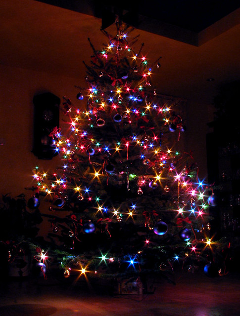 Our Christmas Tree | The stars are natural (long exposure ...