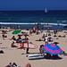 Surfero en Bondi Beach