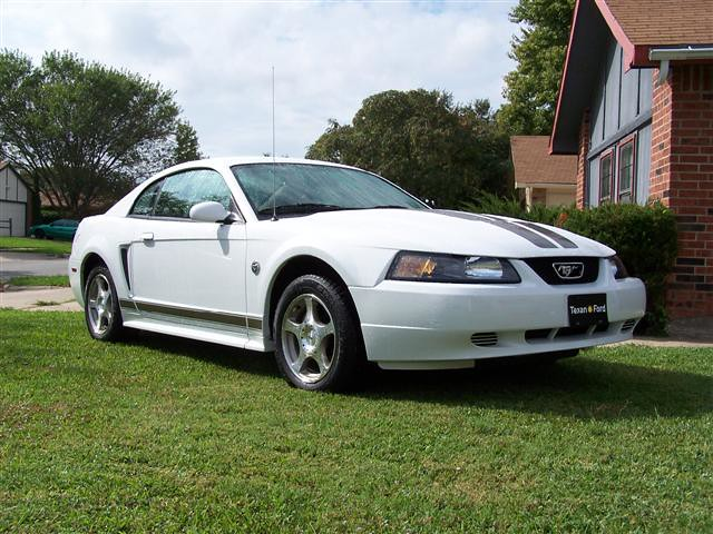 2004 ford mustang 40th anniversary edition limited to 570 flickr. Black Bedroom Furniture Sets. Home Design Ideas