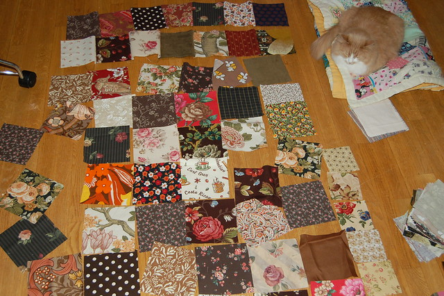 Smilla the cat and my Brown quilt project, by iHanna