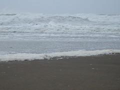 Wonderland Ocean Beach