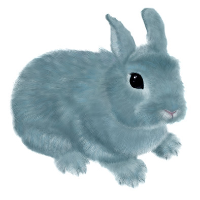Bunny Blue | by Denika Robbins