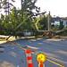 1 of 4 broken poles on Lampson St.