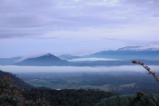 Mists over Horton Plains | by Patrick Costello