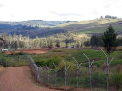 The Ukarumpa Fence
