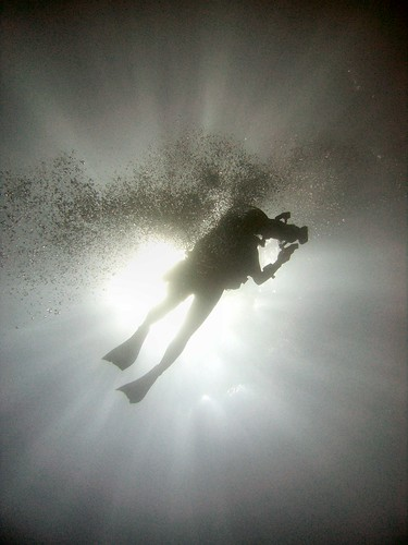 CIMG2167 Diver Silhouette | by Tim Sheerman-Chase