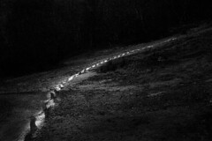 130307 footprints in the night | by Andrew C Wallace