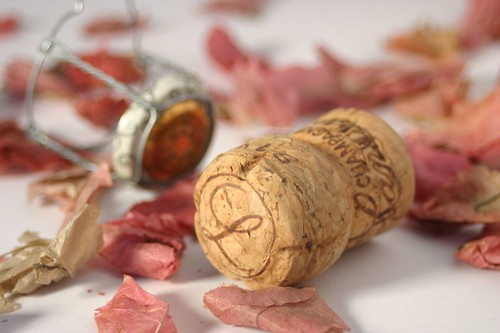 Champagne Cork | by phil wood photo