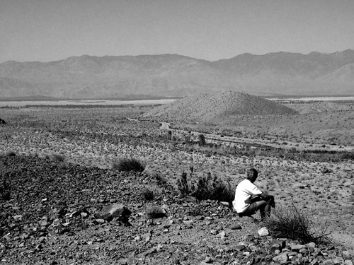 Desert Contemplation