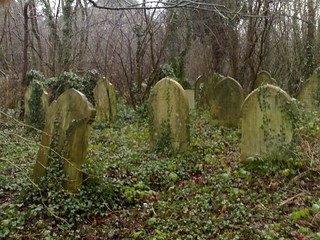 Overgrown graves | by markhillary