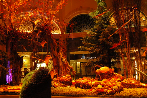 Bellagio's fall bounty | by SonomaPinot