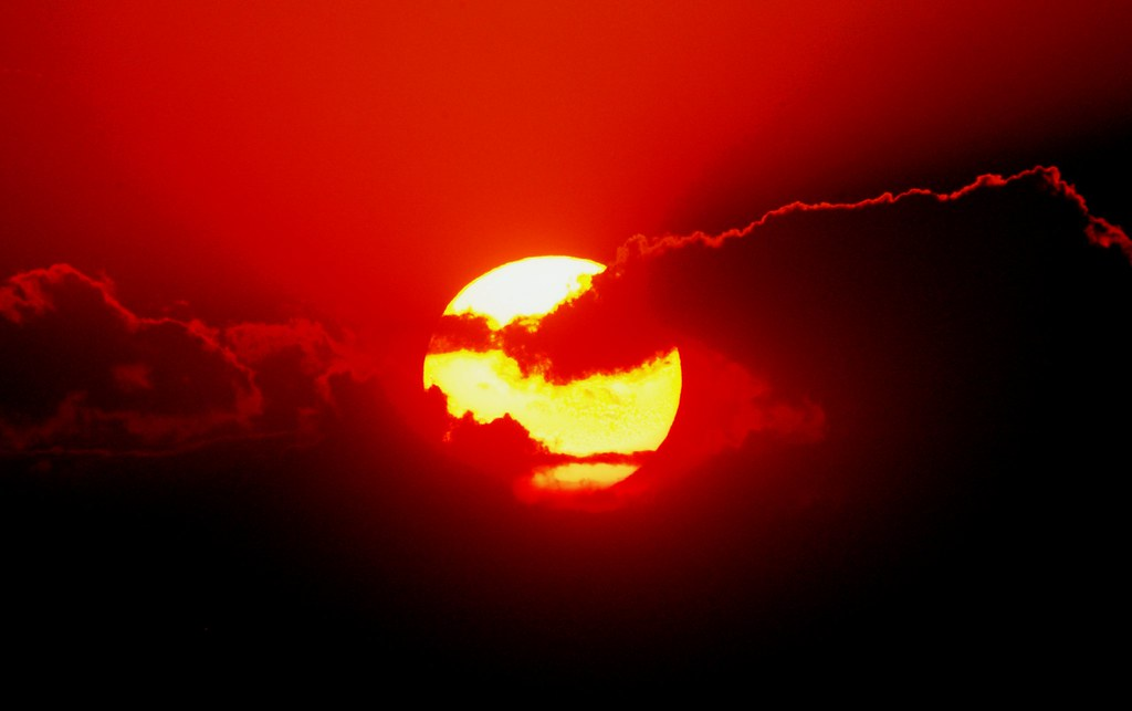 Image result for Fat Old Sun