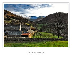 Martindale | by Arctic Wolf