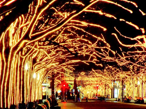 Xmas lights - Unter den Linden - Berlin - Christmas atmosphere | by Lumatic