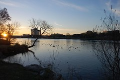 Sunrise at Town Lake