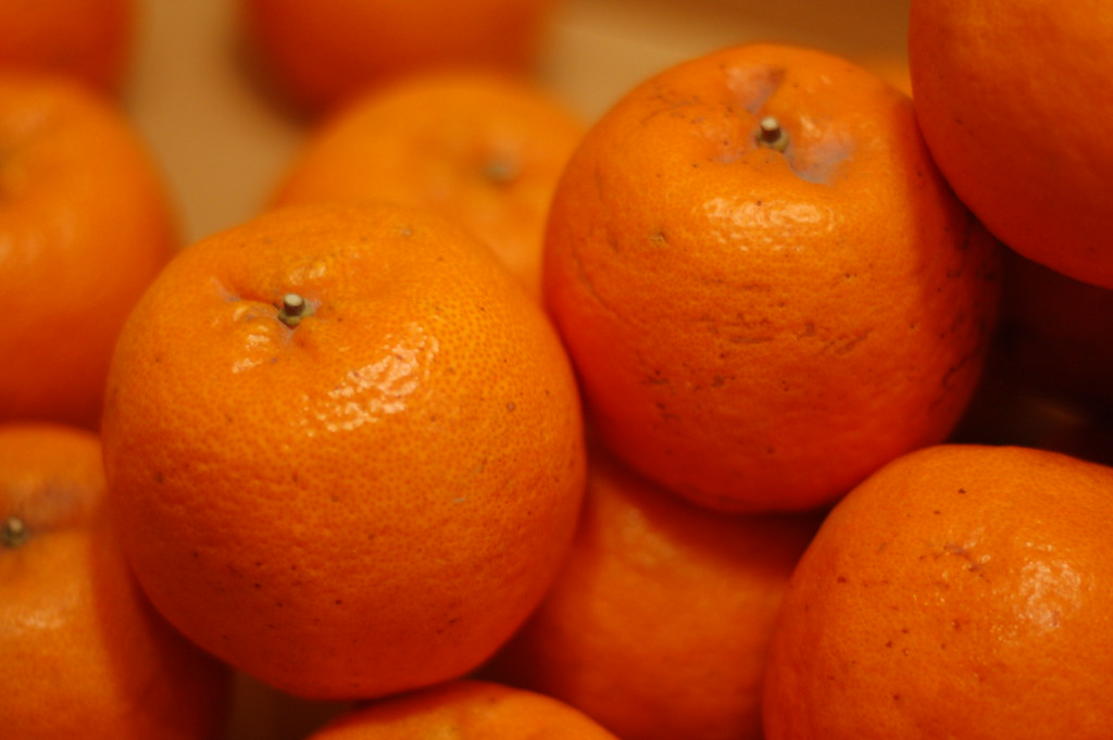 Image result for mandarin oranges