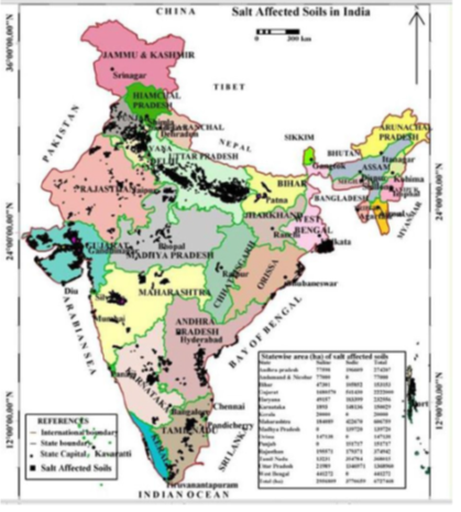 Salt affected soils and their management for Soil in india