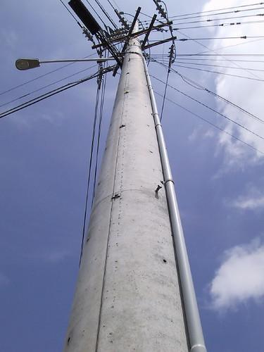 Concrete Electric Poles : Concrete pole the vast majority of utility poles are