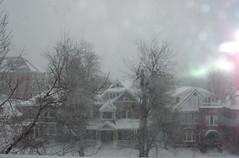 blizzard2