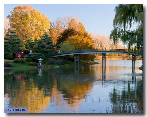 Chicago Botanic Garden | by invisibleme