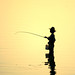 Irrawaddy Fishing