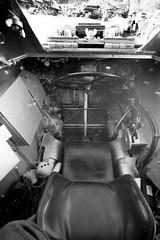 Ferret Car Seat