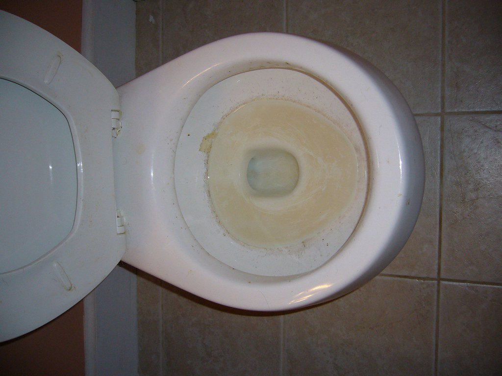Dirty toilet