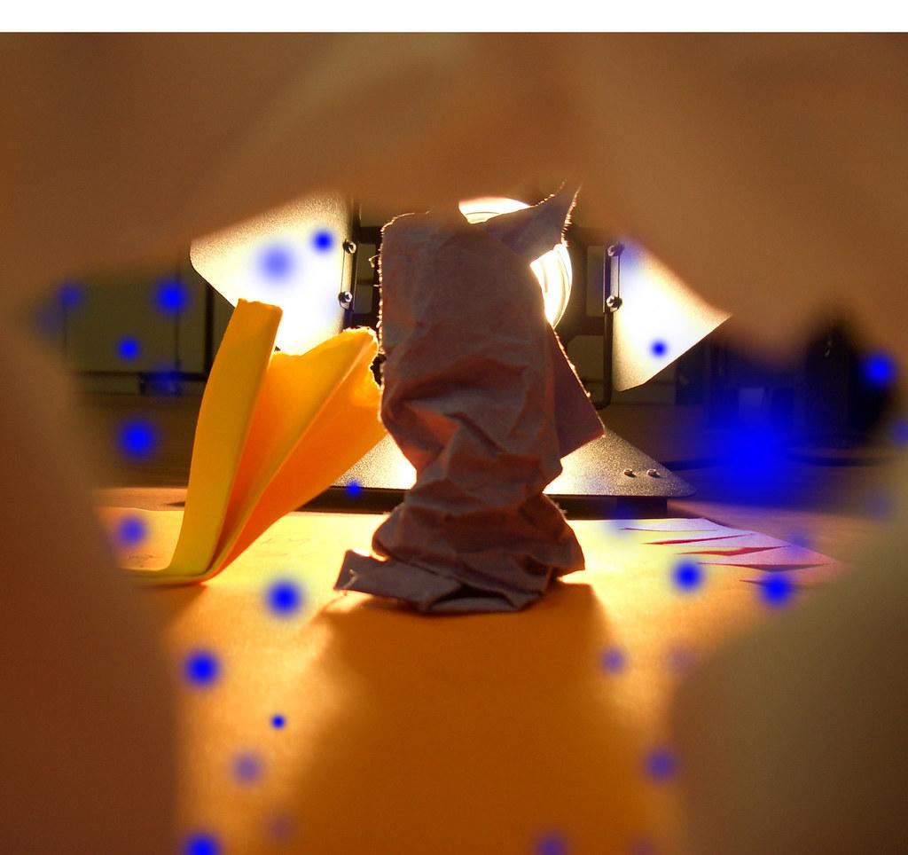 Papierrahmen | Das ist auch ein Teil der Metamorphose. Ein P… | Flickr