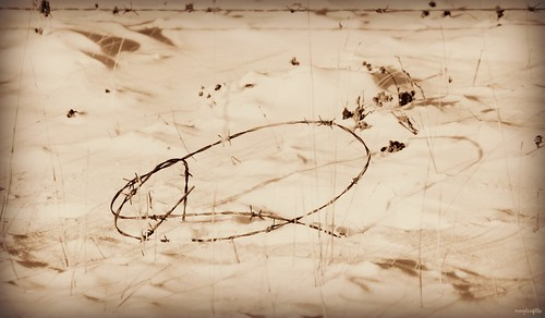Barbed wire invented in the s it was beginning