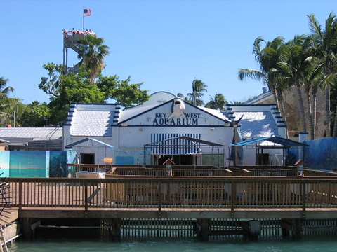 Image Result For Key West Aquarium