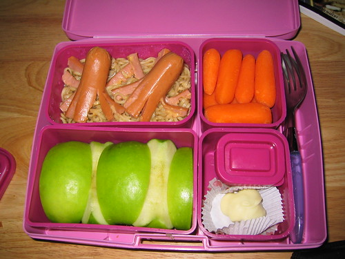 laptop_lunchbox 2007.01.04 | by amanky