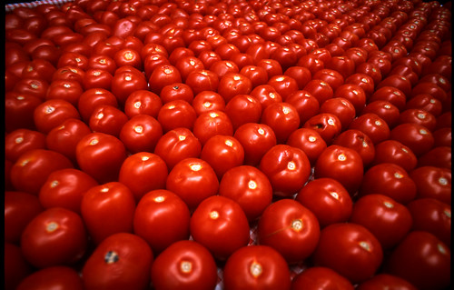 you say tomato | by nickwiesner