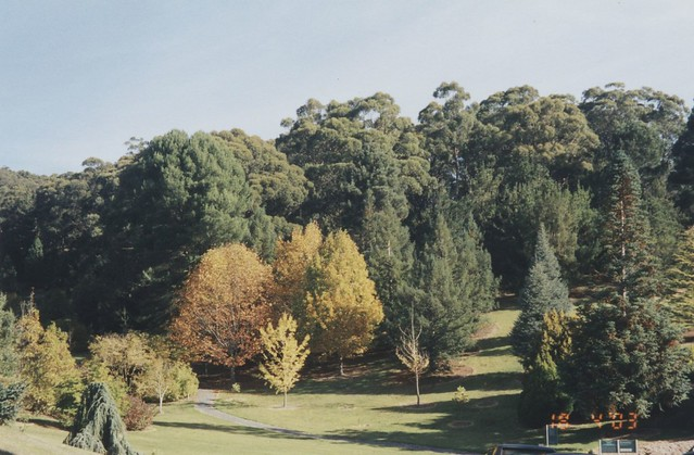 Mt Lofty Botanic Gardens Flickr Photo Sharing
