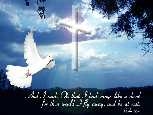 Cross and dove background - photo#20