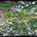 2007_01_01_rosebowl_36.JPG