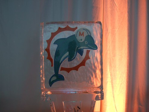 Squish the fish dolphin on ice crim one on da funk for Squish the fish