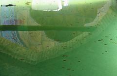 Sufi's pool