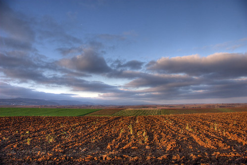 Fertile soil in winter rest | by PauPePro