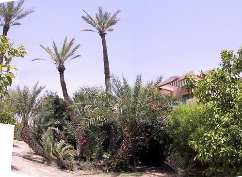 Hotel Palmariva Marrakech