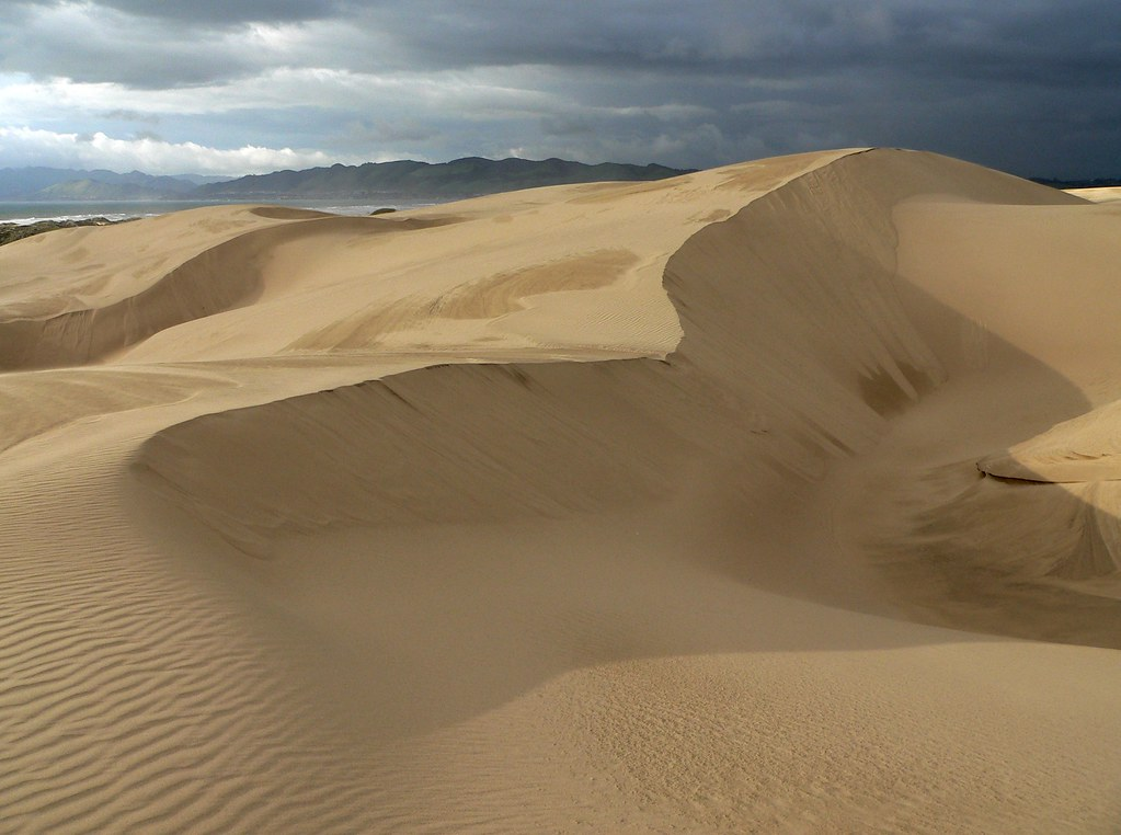 Sand Dunes California Beach