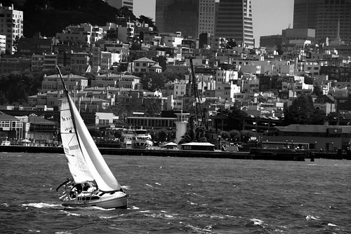 Sailing In San Francisco | by Donncha Ó Caoimh