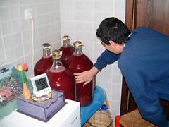 Homewine Fermentation Temperature